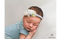 Сколько стоит фотосессия новорожденных?!